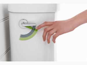 toilet dual flush mechanism