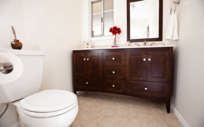 What To Consider When Choosing a Toilet
